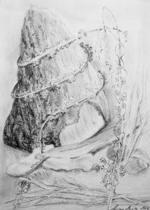 Bleistiftzeichnung von mit Pflanzen umschlungenes Holz