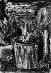 Kohlezeichnung von einem Stillleben mit einer Topfpflanze im Vordergrund